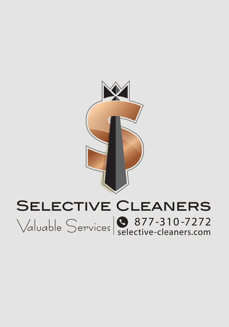 1008 art freelancer group design services logo design, Selective Cleaners